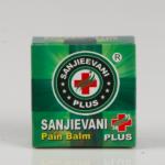 SANJIEVANI PAIN BALM 10GM